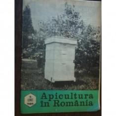 REVISTA APICULTURA IN ROMANIA NR.6/1989