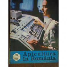 REVISTA APICULTURA IN ROMANIA NR.11/1980