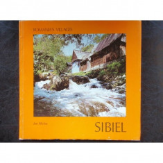 SIBIEL - ION MICLEA
