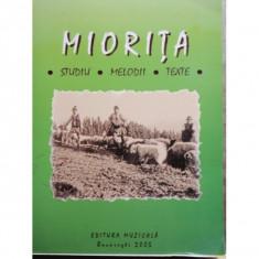 MIORITA - STUDIU, MELODII, TEXTE