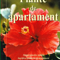 Jane Courtier - Plante de apartament - 31055 - Carte gradinarit