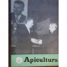 REVISTA APICULTURA NR.3/1974
