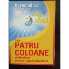 CELE PATRU COLOANE ALE DESTINULUI - RAYMOND LO