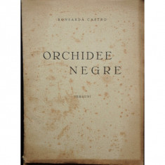 ORCHIDEE NEGRE - RONSARDA CASTRO