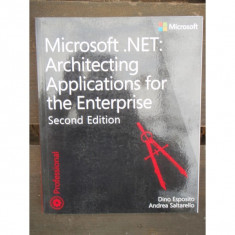 MICROSOFT NET: ARCHITECTING APPLICATIONS FOR THE ENTERPRISE - Carte despre internet