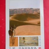HOPCT 27347 TUNISIA SAHARA -NECIRCULATA, Printata