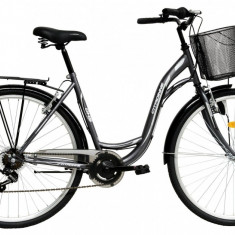 Bicicleta DHS Citadinne 2832 (2016) Culoare Gri 450mmPB Cod:21628324570 - Bicicleta de oras
