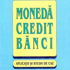 Cezar Basno - Moneda. Credit. Banci. Aplicatii si studii de caz - 13529 - Carte Economie Politica