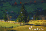 CP Romania ,necirc -  Bucovina - Toamna la Sadova