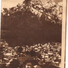 CPI (B8187) CARTE POSTALA - BUSTENI. SPRE CARAIMAN SI BUCEGI - Carte Postala Transilvania dupa 1918, Circulata, Fotografie