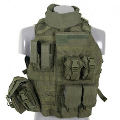 Vesta Interceptor Body Armour Olive