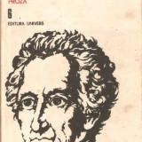 Goethe-proza vol. 6 - Roman