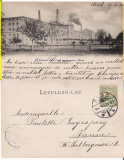 Arad -Fabrica de spirt si drojdie Fratii Neuman- iudaica, clasica, Circulata, Printata