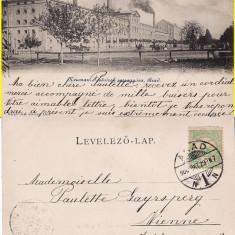 Arad -Fabrica de spirt si drojdie Fratii Neuman- iudaica, clasica