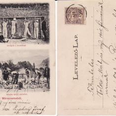 Sighet, Maramures - exploatare sare, minerit- rara - Carte Postala Maramures pana la 1904, Circulata, Printata