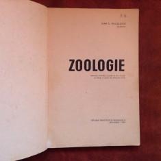Manual scolar - Zoologie clasa X liceu si anul I licee speciale - 1967 / 240 pag, Clasa 8, Romana