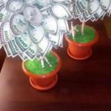Pomi decorativi - Vaza si suport flori