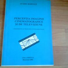 PERCEPTIA IMAGINII CINEMATOGRAFICE SI DE TELEVIZIUNE-OVIDIU RADULET - Carte Cinematografie