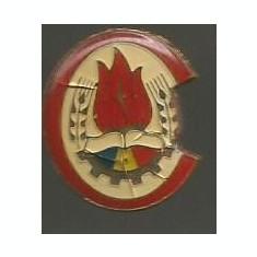 Insigna-PIONIER