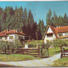Bnk cp Predeal - Vedere - circulata - Carte Postala Transilvania dupa 1918, Printata