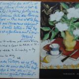 Expozitia Pallady , Paris , 1973 , insemnari olografe ale sotiei pictorului