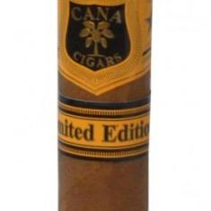 Trabucuri Cana Limited Edition Robusto
