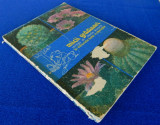 Micii gradinari invitati de Marin Sorescu In minunata lume a plantelor (cactusi)