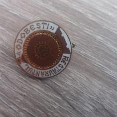 BIRO1 - TURISM - RESTAURANTUL ODOBESTI - Insigna