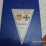 fanion      Romania-Irlanda de Nord