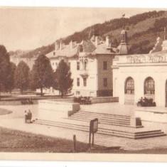 Vatra Dornei 1953 - Cantina - Carte Postala Bucovina dupa 1918