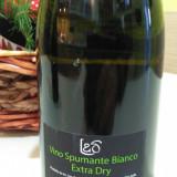 Spumant Extra Dry, Italia