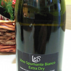 Spumant Extra Dry, Italia - Vin spumant