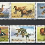 2007 - rate si gaste salbatice, serie stampilata - Timbre Romania
