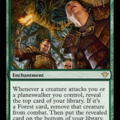 MTG Lost in the Woods x4 - Colectii