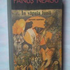 (C331) FANUS NEAGU - IN VAPAIA LUNII - Roman