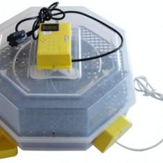Incubator automat oua Cleo 5DTh - Incubator oua