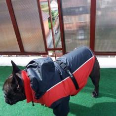 Geaca caine bulldog francez - Haina caine