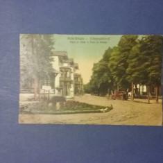 Baile Valcele - Parc si aleea 1929 / C1DP