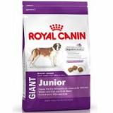 ROYAL CANIN GIANT JUNIOR 4 kg - Hrana caine