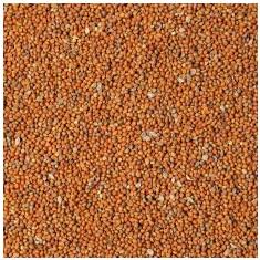 Mei roșu senegalez - hrană pentru păsări 25kg - Mancare pasari
