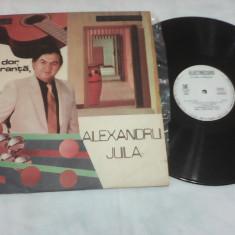 DISC VINIL ALEXANDRU JULA UN DOR O SPERANTA EDE 03551 - Muzica Folk
