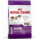 ROYAL CANIN GIANT ADULT 4 kg - Hrana caine
