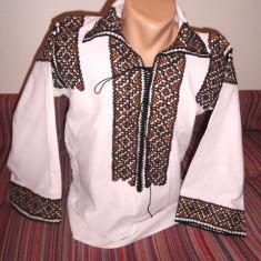 Camasa populara Putna - Costum populare, Marime: 40, Culoare: Maro