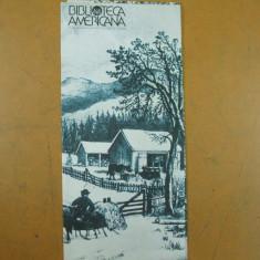 Petru Vintila pictura naiva catalog expozitie Biblioteca Americana Bucuresti