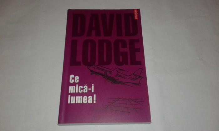 DAVID LODGE - CE MICA-I LUMEA !