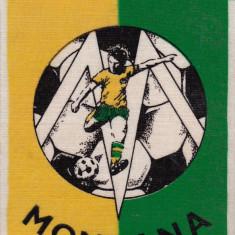 Fanion fotbal MONTANA SINAIA