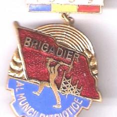 (7) INSIGNA BRIGADIER AL MUNCII PATRIOTICE 1959