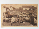 ROMANIA+ANII 20+SALUTARI DIN ROMANIA+CARTE POSTALA ANII 20, Circulata, Printata