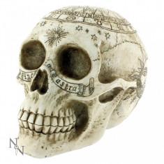 Statuetă Craniu astrologic - Sculptura