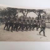 Parada de ziua Regelui - fotografie. - Fotografie veche